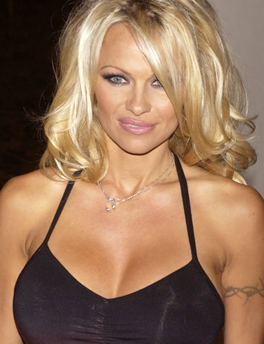 Pamela Anderson To Join CHICAGO? | Divabetic® Blog Pamela Anderson
