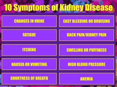 KidneyQ.002